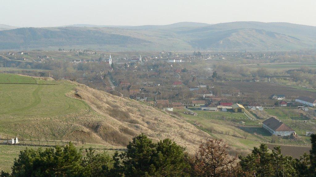 Proiect integrat în comuna Bogata, judeţul Mureş